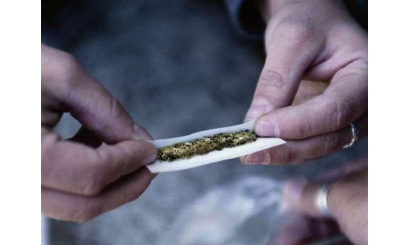 14.6 percent of U.S. adults used marijuana in past year