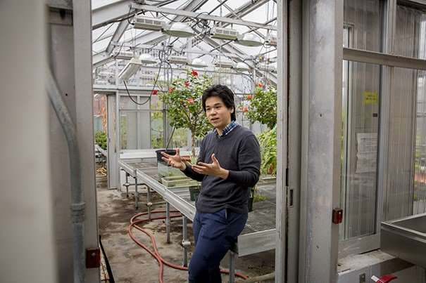 """Researchers develop """"bionic leaf"""" for distributed agriculture"""