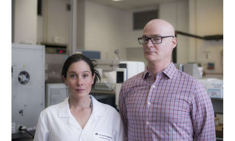Researchers date 'hibernating' HIV strains, advancing BC's leadership in HIV cure research