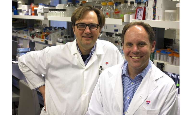 $15 million gift will create unique powerhouse initiative to fight infections and immunity
