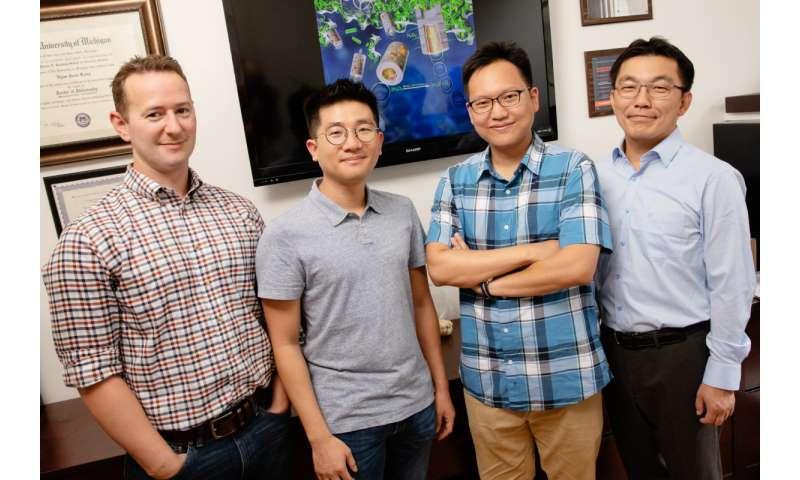 Researchers develop microbubble scrubber to destroy dangerous biofilms