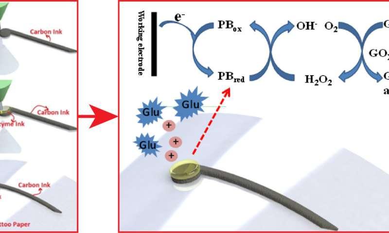 WSU researchers create 3D-printed glucose biosensors