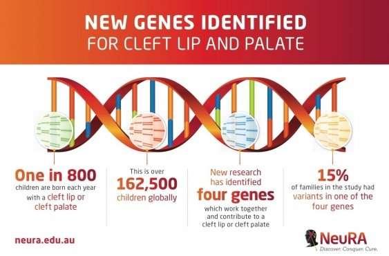Breakthrough in cleft lip and palate research