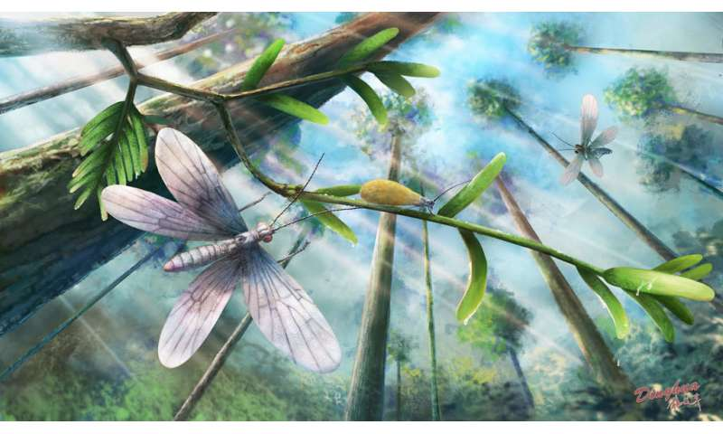 200-million-year-old insect color revealed by fossil scales
