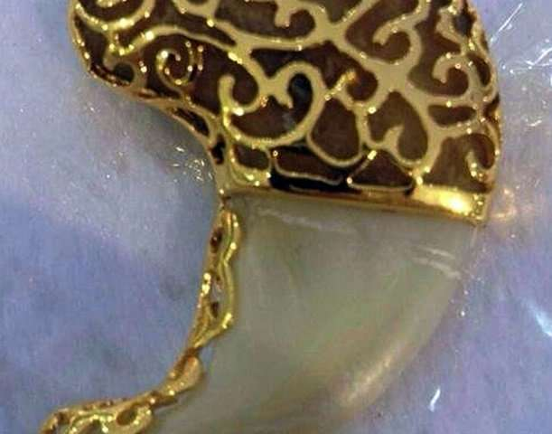 A handout photo showing a piece of jewelry made from a jaguar claw
