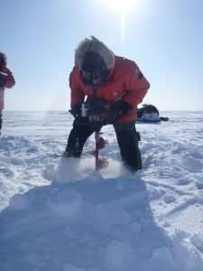 Arctic lakes are releasing relatively young carbon, UCI-led study discovers