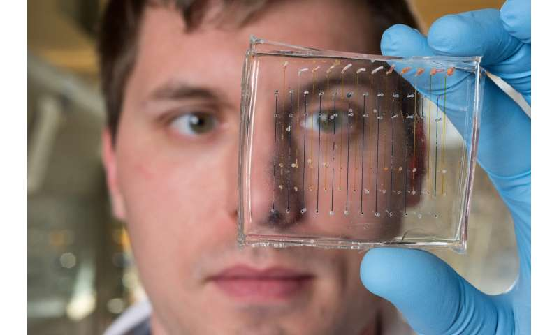 Comparison shows value of DNA barcoding in selecting nanoparticles