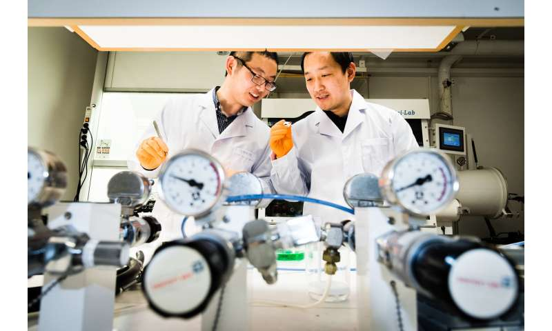 Double perovskites in environmentally friendly solar cells
