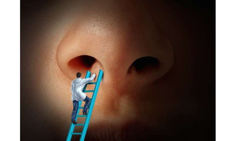 Fewer Americans are fixing their noses