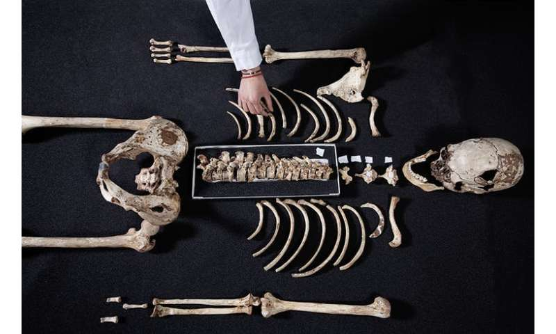 Five surprising things DNA has revealed about our ancestors