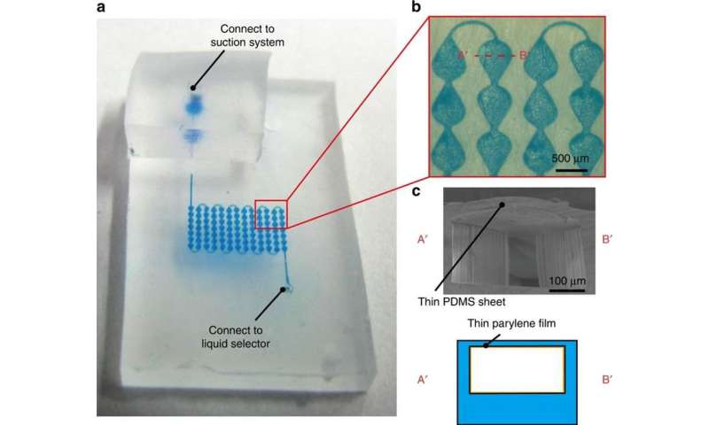 Flexible color displays with microfluidics