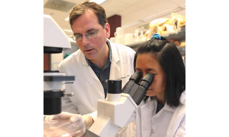 For a better influenza vaccine, focus on the neglected 'N'