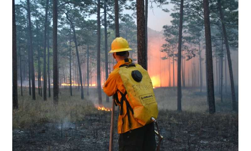 FSU researchers: Most fire in Florida goes undetected