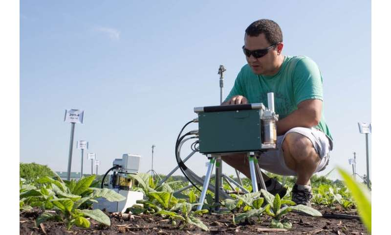 Helping plants remove natural toxins could boost crop yields by 47 percent