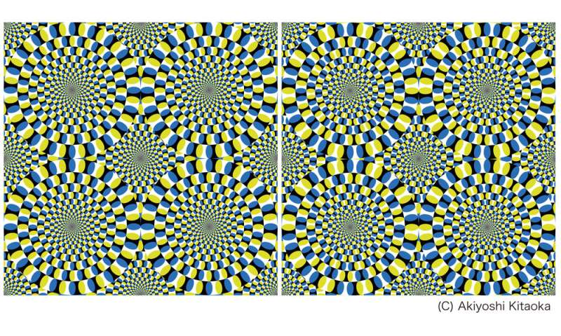 Illusory motion reproduced by deep neural networks trained for prediction