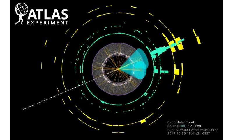 Long-sought decay of Higgs boson observed