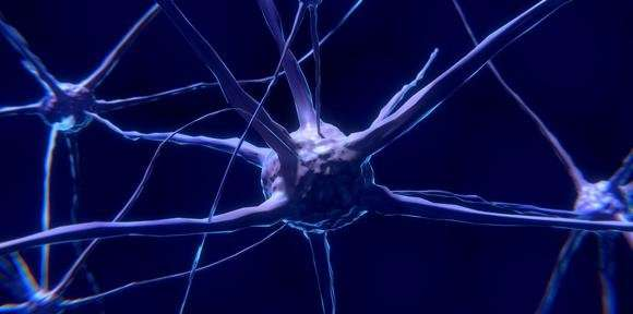 Mechanism behind neuron death in motor neurone disease and frontotemporal dementia discovered