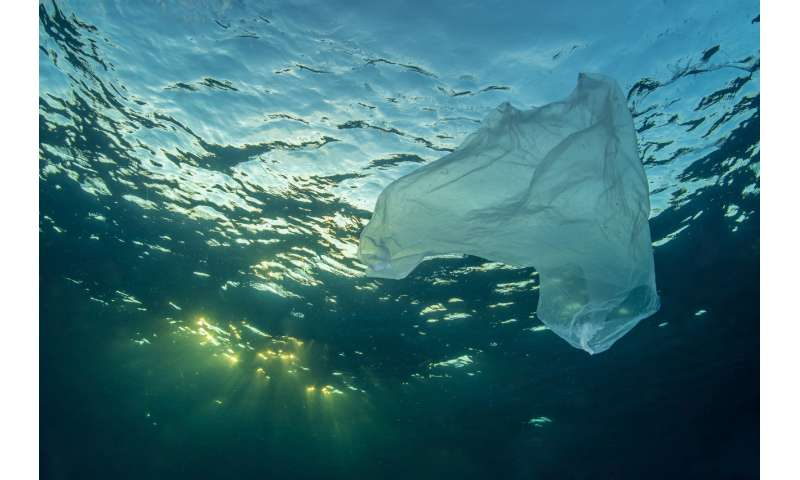 Plastic pollution—could we clean up the ocean with technology?