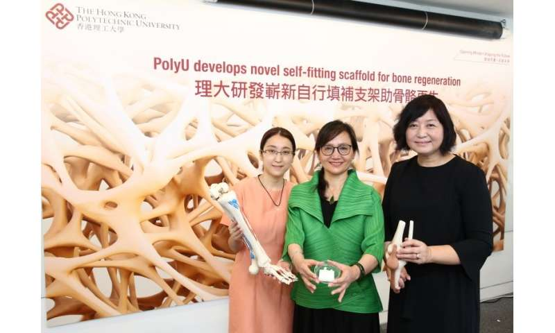 PolyU develops novel self-fitting scaffold for bone regeneration