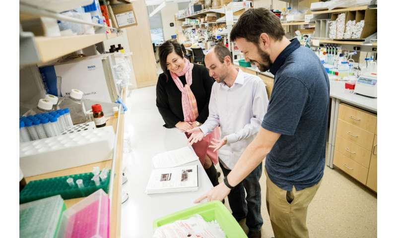 Surprising discovery provides insights into aggressive endometrial cancers
