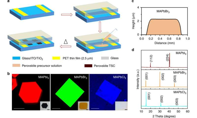Technique allows integration of single-crystal hybrid perovskites into electronics