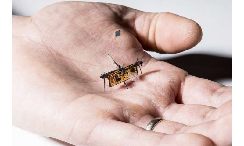 The first wireless flying robotic insect takes off