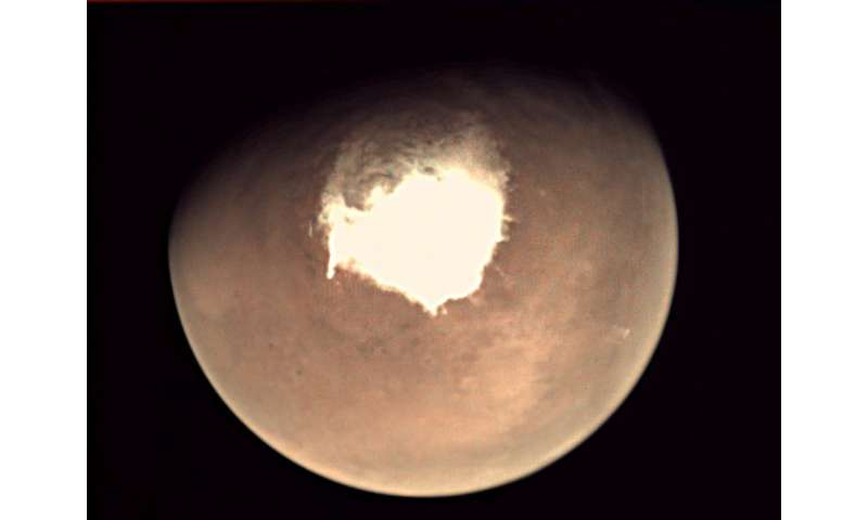 What on Earth could live in a salt water lake on Mars? An expert explains