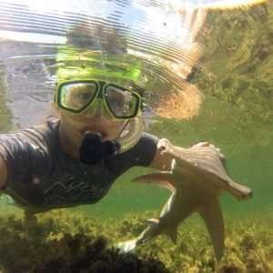 Researcher discovers vegetarian sharks