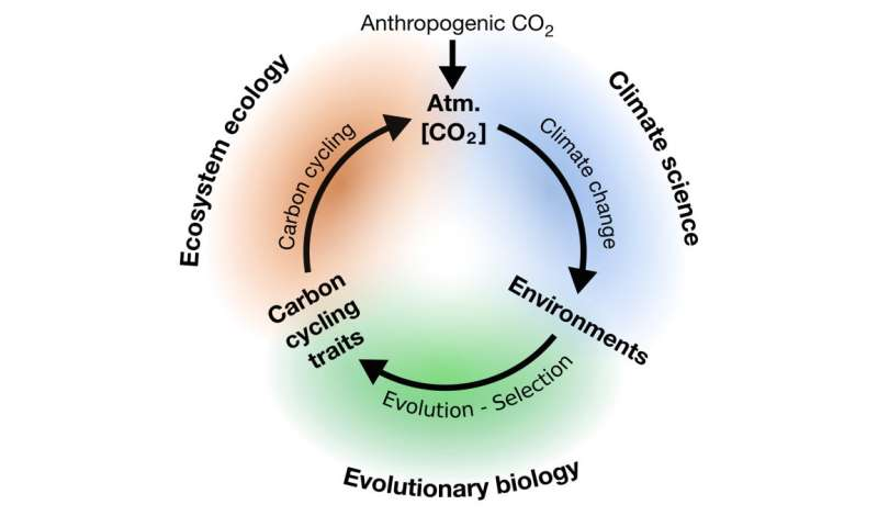 Climate change, evolution, and what happens when researchers are also friends