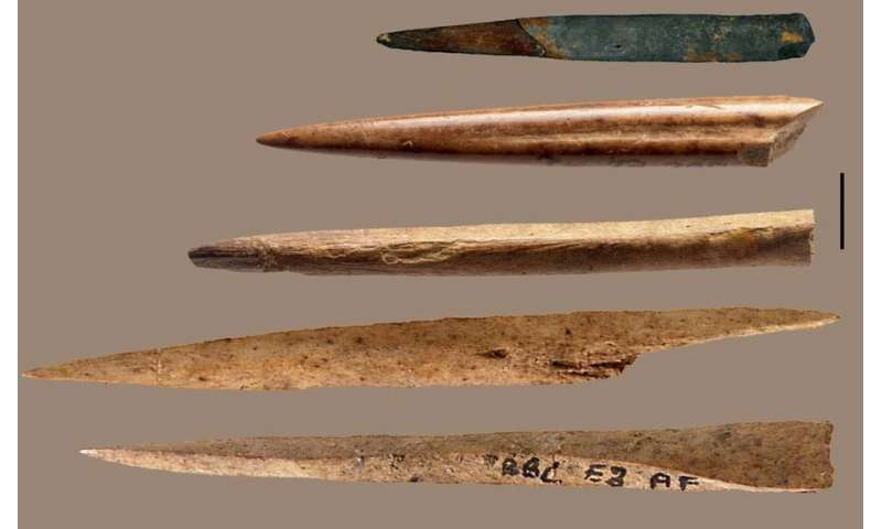 New technology tells us which animal bones were used to make ancient tools