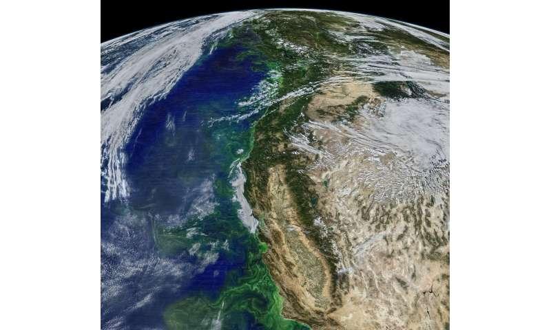 Researchers plunge into ocean 'twilight zone' to explore ecosystem carbon flow