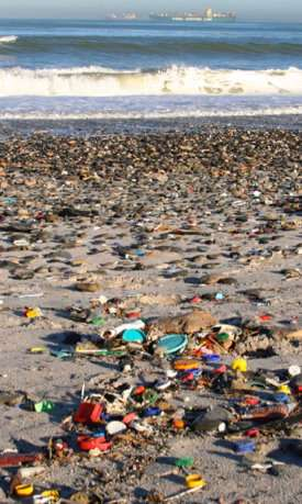 Researcher studies effects of microplastics on the ocean