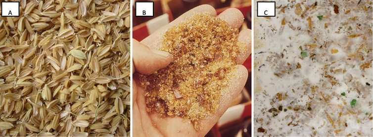 Scientists create new building material out of fungus, rice and glass