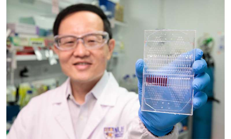 Scientists develop novel cancer cell culture test kit for personalised, precise cancer therapy