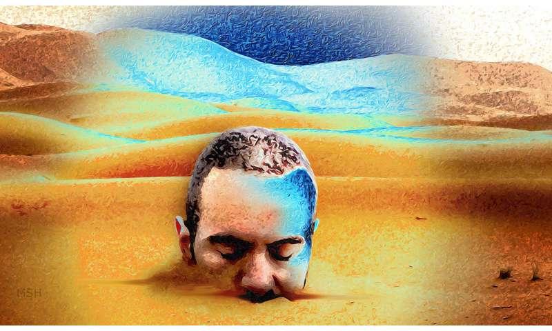 Researchers explain how LSD changes perception