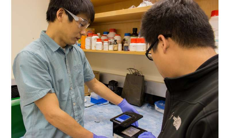 Researchers use smart phone to make a faster infection detector