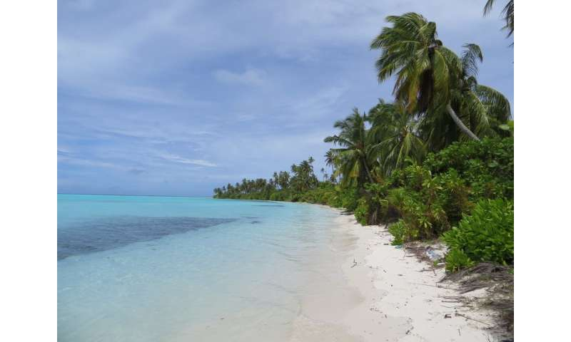 Maldives: climate change could actually help coral islands rise again – but they're still atrisk