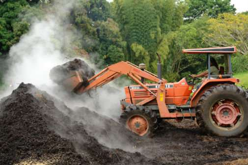 New technology could reduce spread of antibiotic resistance genes through compost