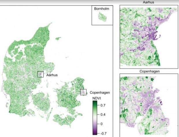 Schizophrenia more prevalent away from green spaces