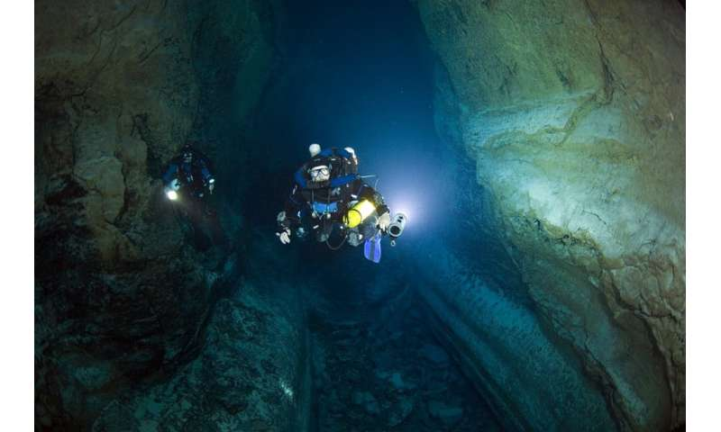 Scientist dives hundreds of underwater caves hunting for new forms of life