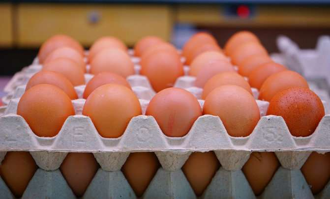 The environmental footprint of the egg industry