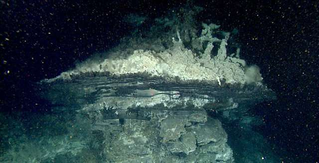 Researchers help map and scout for hydrothermal vents in Gulf of California
