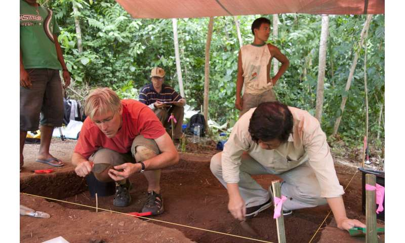 3,500-year-old pumpkin spice? Archaeologists find the earliest use of nutmeg as a food
