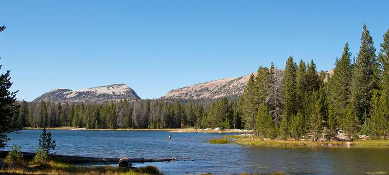 Climate change and its effects on Rocky Mountain alpine lakes