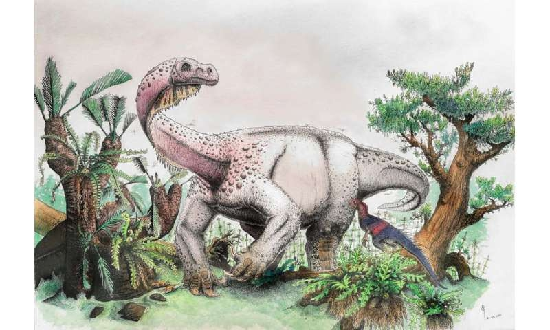 Five reasons why 2018 was a big year for palaeontology
