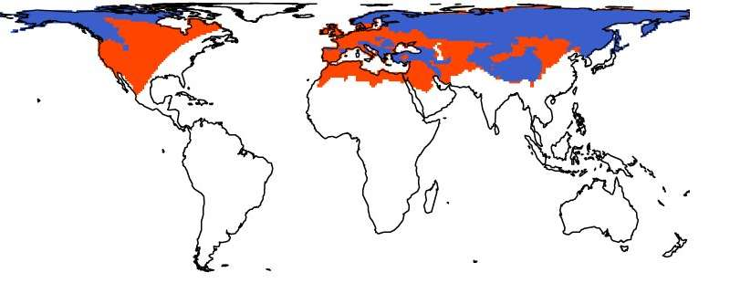 For the first time, scientists are putting extinct mammals on the map