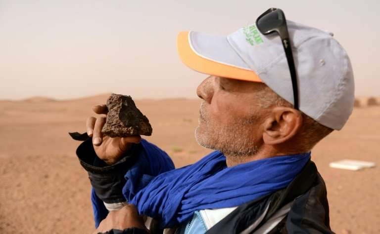 Meteorite hunter Mohamed Bouzgarine examines a rock near the town of M'hamid el-Ghizlane, in southern Morocco.