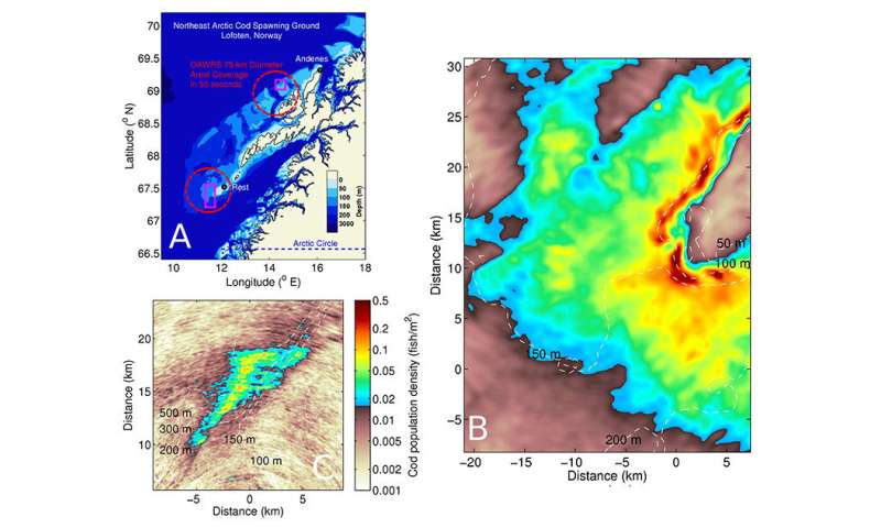 Oceanographers produce first-ever images of entire cod shoals