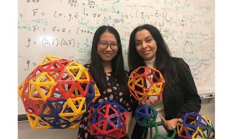 Physicists explain how large spherical viruses form