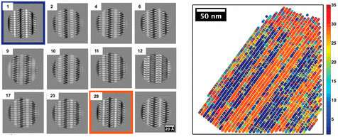 Scientists bring polymers into atomic-scale focus